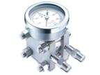 Differential pressure gauges with differential cell